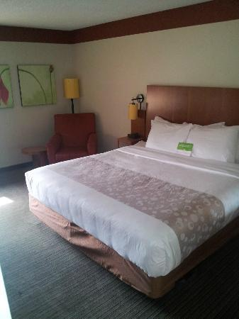 Magnolia Inn and Suites: King Bed