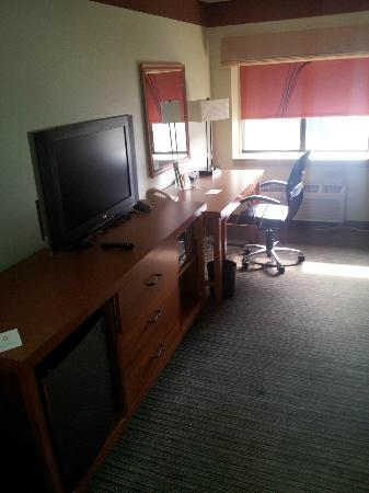Magnolia Inn and Suites: TV/Desk