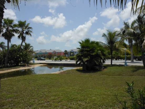Sandyport Beaches Resort: scenery from the hotel grounds