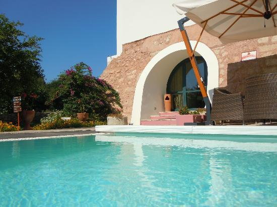 Masseria Fontanelle: Particolare ravvicinato piscina e reception