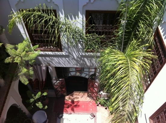 Riad Anais : le patio, puit de lumière