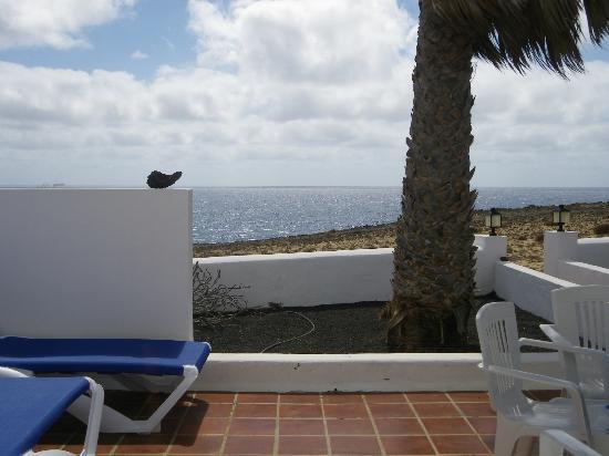Apartamentos Reyes : Vista desde el salón hacia el porche