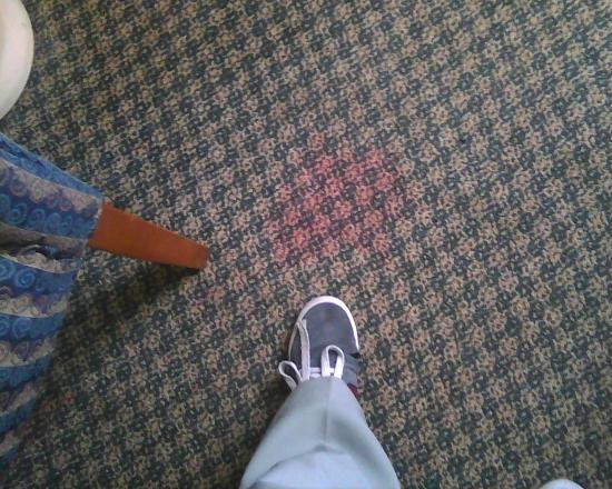 Clarion Hotel: carpet stains in room