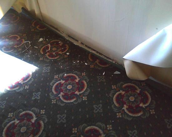 Clarion Hotel: wallpaper down
