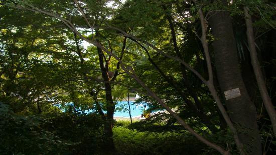 Grand Prince Hotel Takanawa: jardin piscine