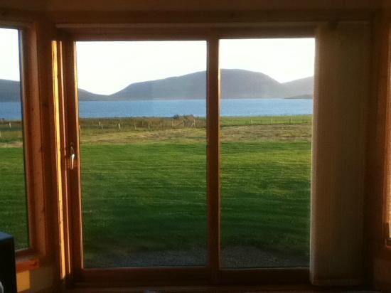 Buxa Farm Chalets: The view from the living room