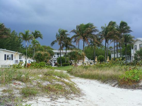 Seaside Inn: View of the hotel grounds from the beach