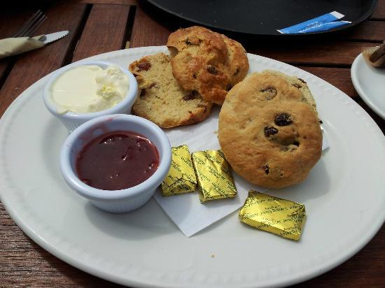 Corbiere Phare : Cream tea