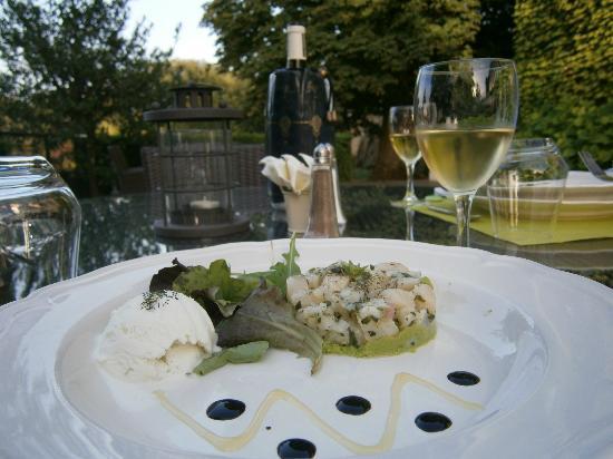 Le Domaine des Buis : Tartare de St.Jacques sur lit de guacamole, boule de sorbet d'huile d'olives et petite salade