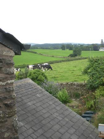 West Barn B&B: View from Goldfinch Room