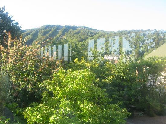 Hotel Chateau-Bromont: Vue du resto