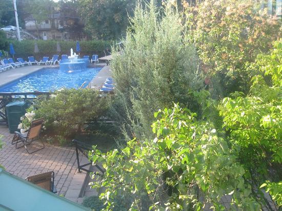 Hotel Chateau-Bromont: Piscine extérieure