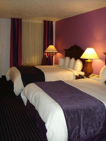 Maison St. Charles Hotel and Suites: pretty purple room