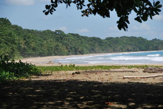 Congo Bongo Ecolodges Costa Rica: Playa de congo bongo