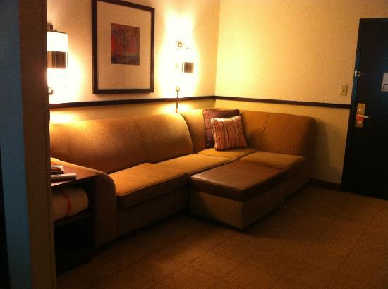 Hyatt Place Atlanta Airport North: Living area