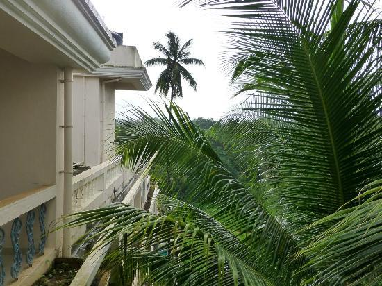 Ocean Palms Goa: From the window