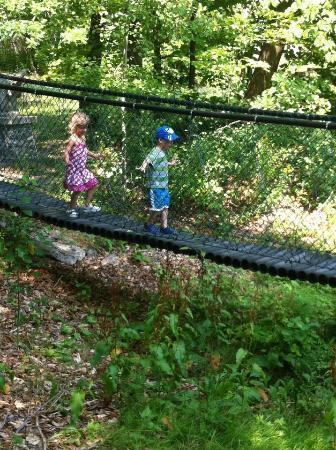 Castle Village Enchanted Kingdom: suspension bridge