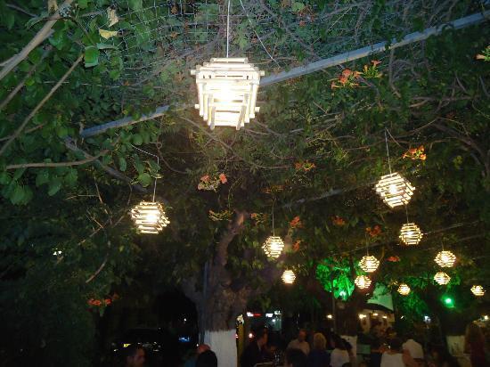 Il Gelso: le splendide lampade