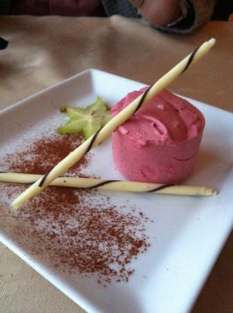 Maren Anna: Homemade raspberry icecream