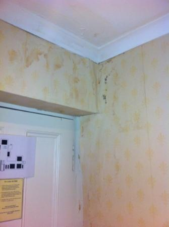 Taychreggan Hotel: damp patch that wasn't a problem