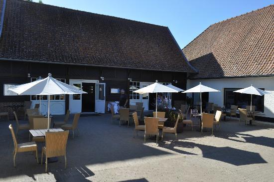 Hotel Restaurant du Cap Hornu: Cafétaria