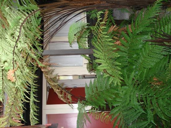 Heartland Hotel Glacier Country: mein Zimmer - Außenansicht
