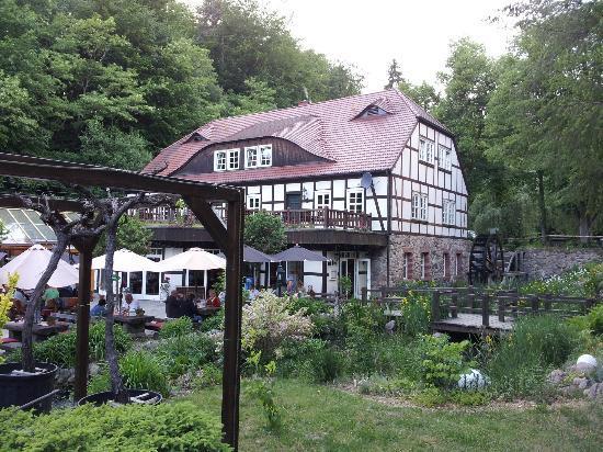 Gühlen, Deutschland: Blick auf die Terrasse