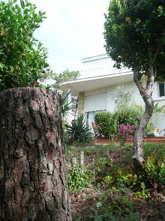 Les Genets: la maison vue du jardin