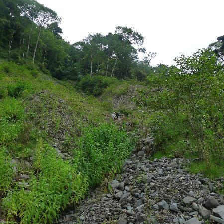 Quetzal Trail: Landslide area, where we lost the trail for the first time