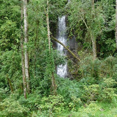 Quetzal Trail: Waterfall number one.  Walk to the left of it