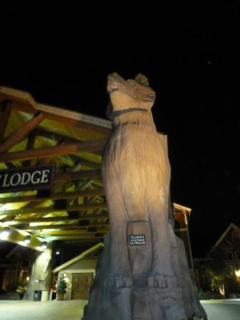 Great Wolf Lodge Concord: entrance