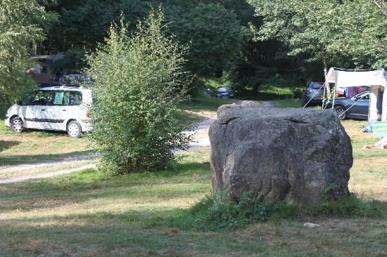 L'Etang de la Fougeraie: Campsites