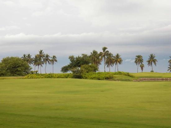 Estrella Del Mar Resort Mazatlan: Campo de Golf