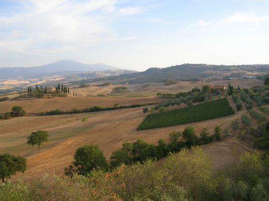 Agriturismo La Buca : Panorama dalla camera