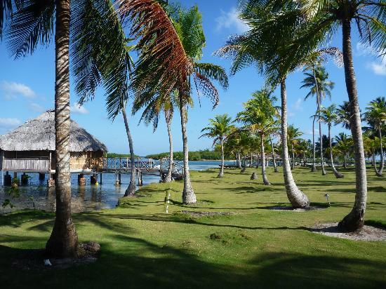 Yandup Island Lodge: Cabana Sobre o mar