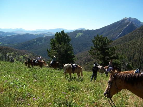 63 Ranch: View from Bear Draw