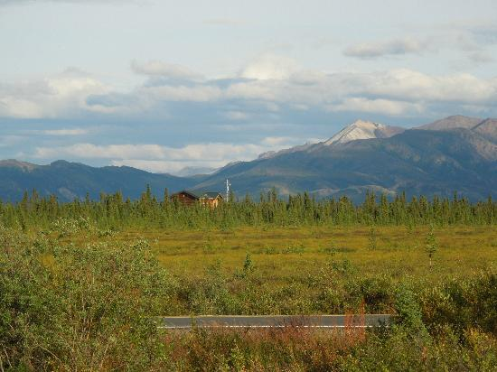 EarthSong Lodge - Denali's Natural Retreat: Our view from out cabin. Trust me this picture does not do it enough justice.