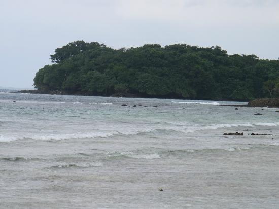 Oyster Island Resort: beach on ocean side island