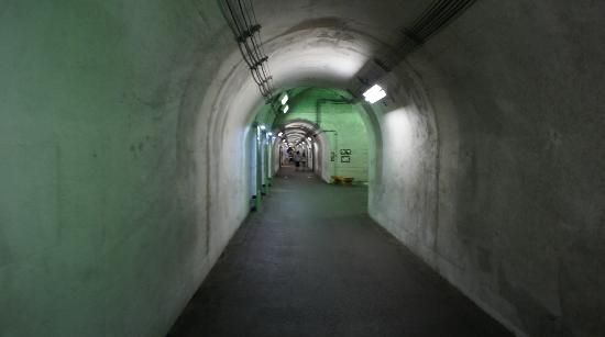 Kiyotsu Gorge: トンネル内部