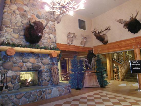 C'mon Inn Hotel & Suites: Lobby - We're not in Jersey anymore!