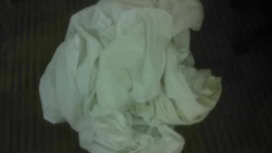 Extended Stay America - Orange County - Anaheim Convention Center: Pile of hairy linen