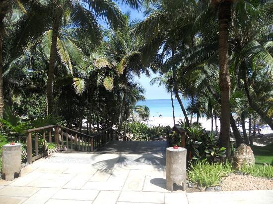 Beach Picture Of Melia Las Americas Varadero Tripadvisor