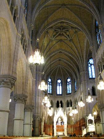 Cathedral Basilica of the Sacred Heart: Basilica of the Sacred Heart vaulted interior