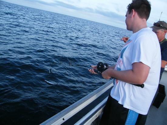 WayPoint 04: fishing for mackerel
