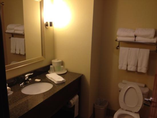هوليداي إن إكسبريس آند سويتس ويثيفيل: bathroom, clean and modern