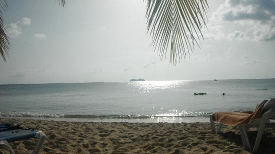 Allegro Cozumel: Desde la Playa del Hotel
