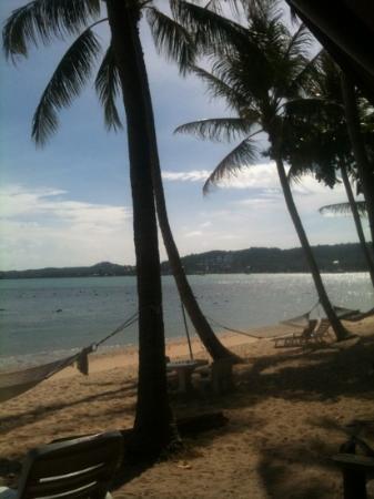 Como Resort Koh Samui: vue à droite