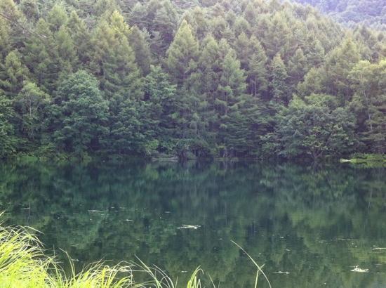 Mishakaike Pond: 水面に映り込む山の緑が綺麗です
