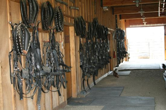Devil's Thumb Ranch Resort & Spa : Stables