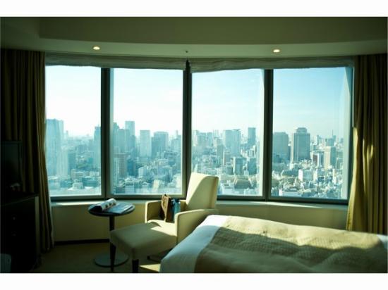Park Hotel Tokyo: View